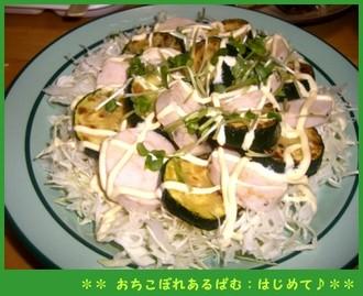 Torihamusara_2