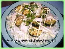 Torihamusara